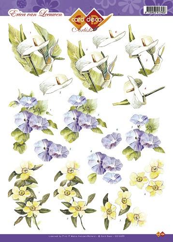bloemen erica